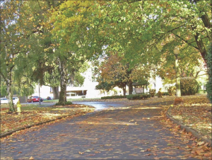 OSD-Campus